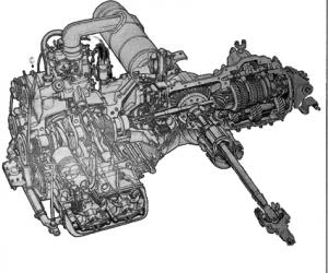 Flavia Boxer-Motor